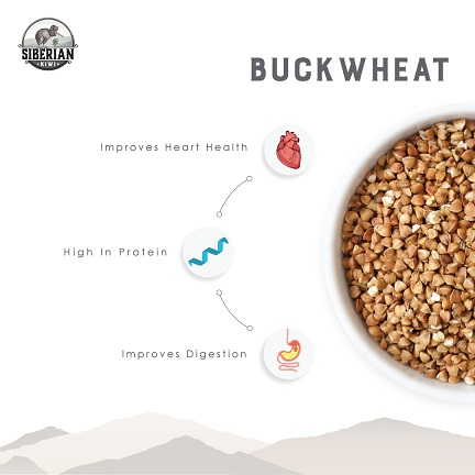 Siberian buckwheat